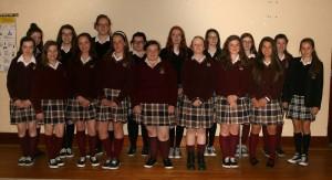 The 2015/16 Green School Committee